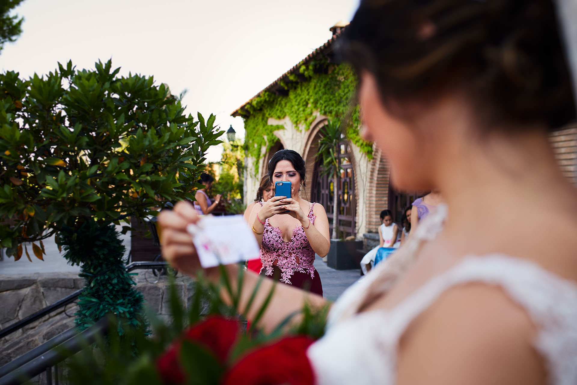 rosas novia boda